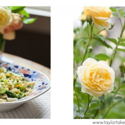 Pasta Salad Primavera recipe