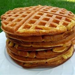 Rich Yogurt Waffles recipe