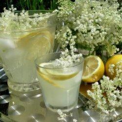 Prelude to Summer - Old Fashioned English Elderflower Cordial recipe