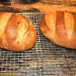 Easy Rye Bread recipe