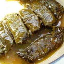 Vegetarian Dolmades recipe
