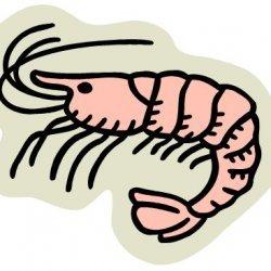 Mom's Shrimp Dip recipe