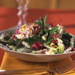 Parsley, Radicchio, and Napa Cabbage Salad with Lemon Vinaigrette recipe