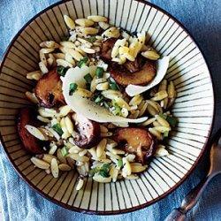 Orzo with Pecorino and Mushrooms recipe