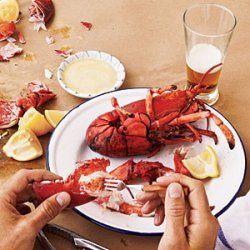 Grilled Maine Lobsters recipe
