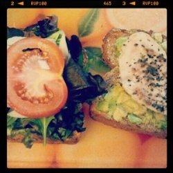 Basil pesto chicken sandwich recipe