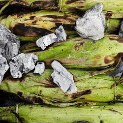 Ember-Roasted Corn on the Cob recipe