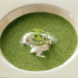 Chilled Watercress Soup with Onion Cream recipe