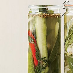 Spicy Dill Quick Pickles recipe