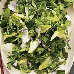 Herb-and-Endive Salad with Creamy Lime Dressing recipe