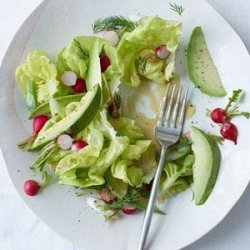Butter Lettuce, Radish and Avocado Salad with Mustard Dressing recipe