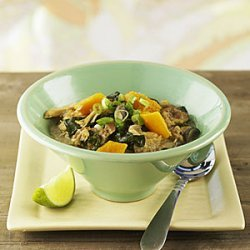 Spicy Southeast Asian Chicken And Squash Stew recipe