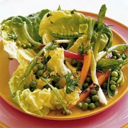 Salad of Spring Vegetables with Green Pea Vinaigrette recipe