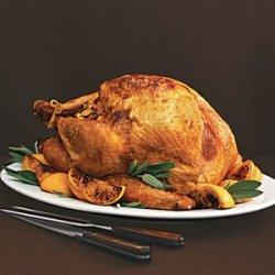 Roast Turkey with Sage and Orange Gravy recipe