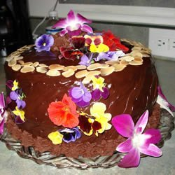 Black Chocolate Cake recipe