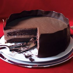 Chocolate Panna Cotta Layer Cake recipe