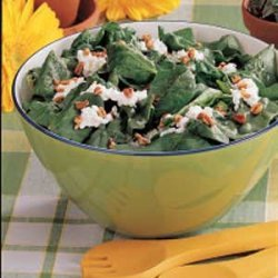 Cottage Cheese Spinach Salad recipe