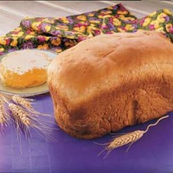 Bread Machine Wheat Bread recipe