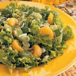 Mandarin Tossed Salad recipe