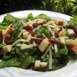 Winter Fruit Salad With Lemon Poppy Seed Dressing recipe