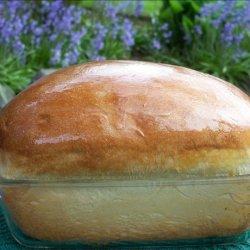 Sweet Hawaiian Yeast Bread (bread Machine) recipe