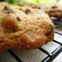 Extraordinary Chocolate Chip Cookies recipe