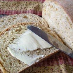 Onion Bread for the Abm recipe