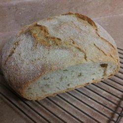 Easy No Knead Dutch Oven Crusty Bread recipe