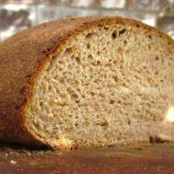 Sourdough Honey Whole Wheat Bread recipe