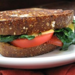 Grilled Cheese With Spinach & Tomato recipe