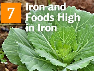 Iron and Foods High in Iron