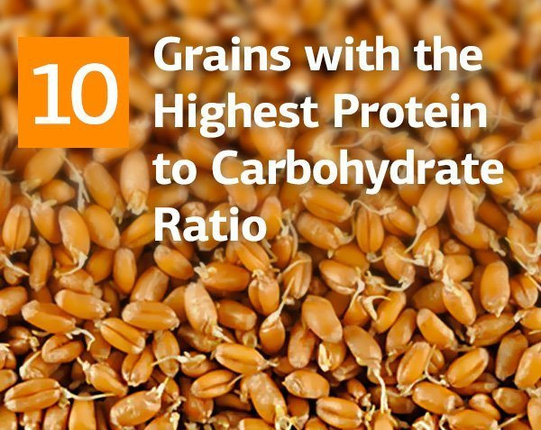 Top 10 Grains and Legumes with the Highest Protein to Carbohydrate Ratio