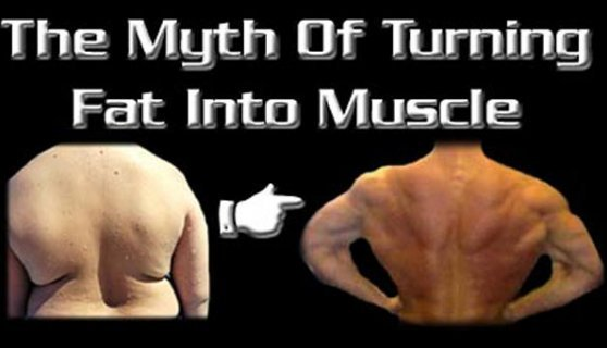 How to turn fat into muscles?