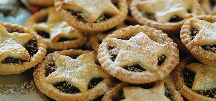 Mince Pie with Cranberries