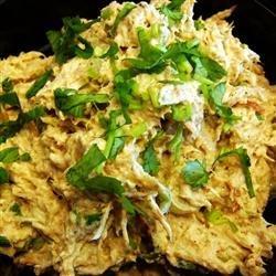 Sassy Chicken Enchilada Dip