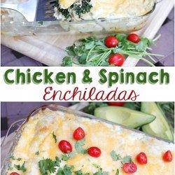 Chicken and Spinach Enchiladas!