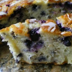 Moody Mountain Blueberry Frump Cake