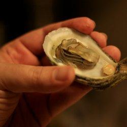 Oyster Chowder