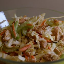 Taste of Home's Creamy Coleslaw
