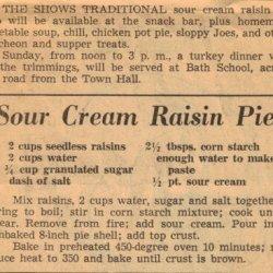 Easy Sour Cream Raisin Pie