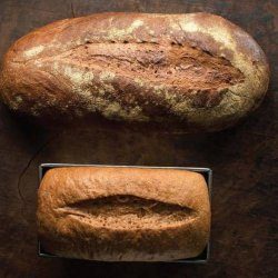 No Need to Knead Bread