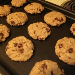 Vegan Chocolate Carob Farina Nut Cookies