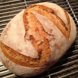 Harry's Whole Grain No Knead Dutch Oven Bread