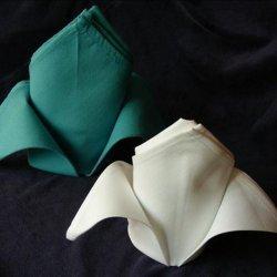 Serviette/Napkin Folding, the Fleur De Lis