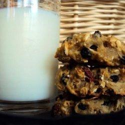Multigrain Exam Cookies (High Energy/Healthy)