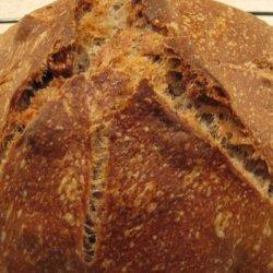 Sourdough (Wild Yeast)  Bread