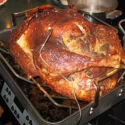 Morton Thompson Turkey