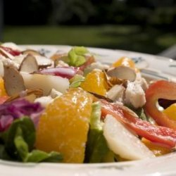 Asian Chicken Salad With Orange-Ginger Dressing