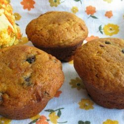 Pumpkin Chocolate Covered Raisin Muffins
