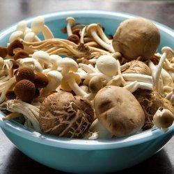 Wild mushroom ragout